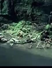 《盜墓筆記》中張起靈為什么要給鐵棺跪地磕頭?鐵棺里究竟是誰?