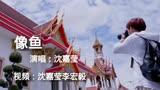 電視劇歲月忽已暮人物推廣曲《像魚》李宏毅沈嘉瑩
