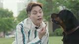電影《寵愛》同名主題曲MV上線 陳偉霆吳磊郭麒麟李蘭迪等演唱
