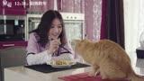 《寵愛》同名主題曲MV上線!陳偉霆鐘楚曦有愛互動甜度爆表